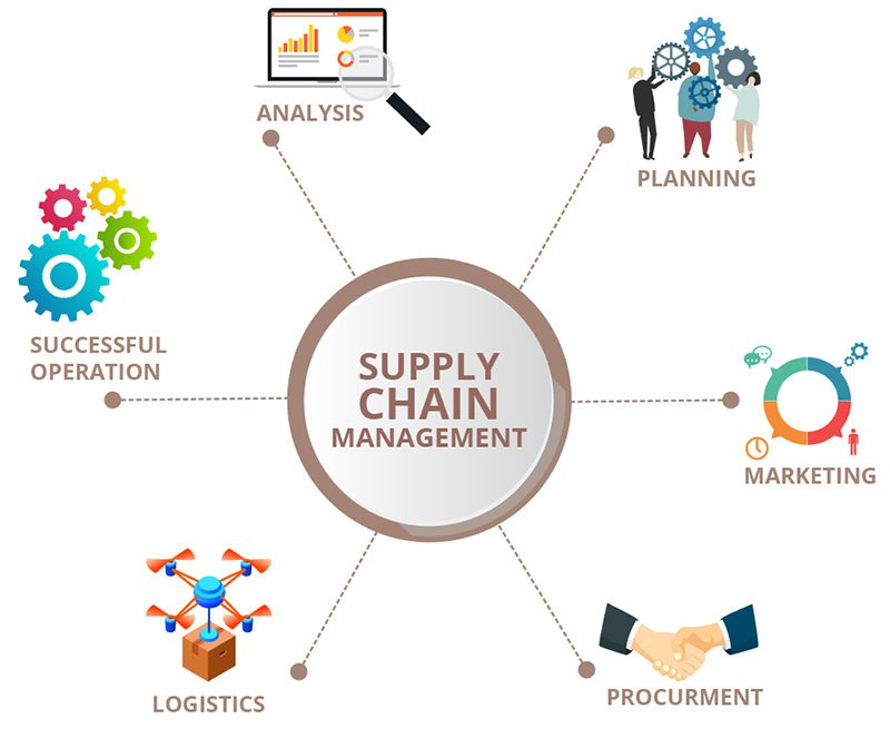 Supply Chain Management and Procurement